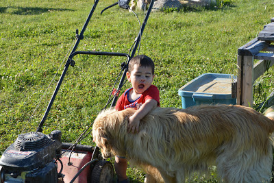 "Levi has two passions--dogs, and things with wheels, all of which he insists are ""trucks"". He rarely gets to enjoy both at the same time. That look on his face? That's baby bliss."
