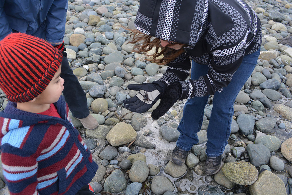 Erin found a crab on the beach. Levi thought looking was close enough.