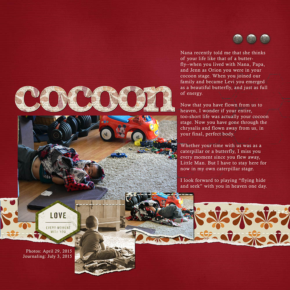 Cocoon web.jpg