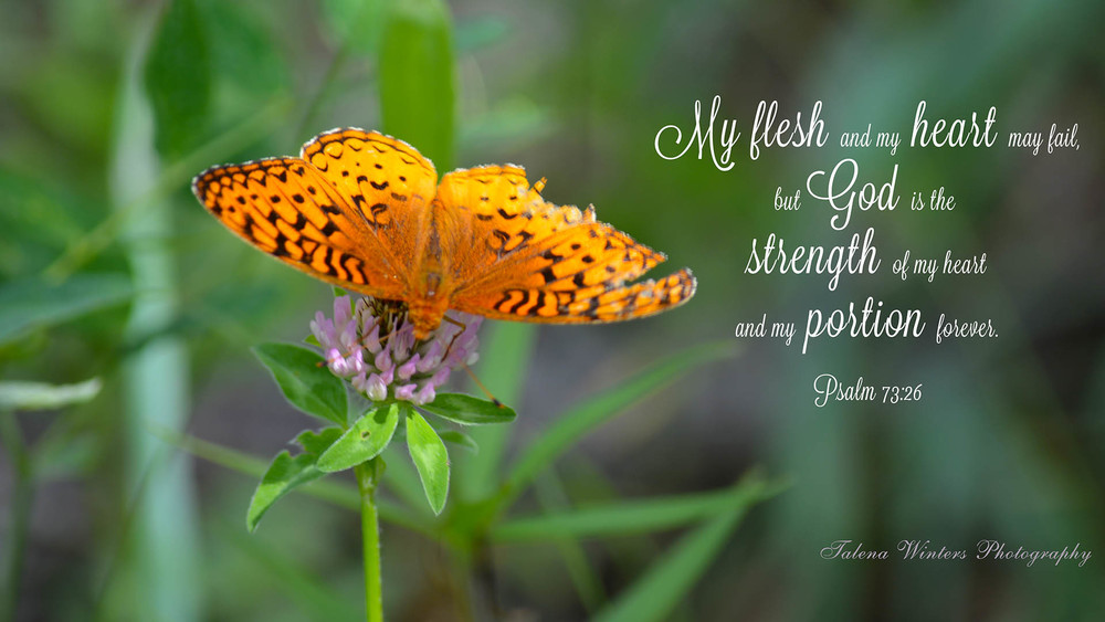 Inspirational photography and scripture quote wallpaper by Talena Winters. www.talenawinters.com