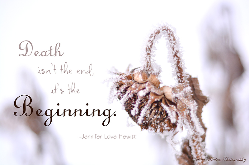 """Death isn't the end, it's the beginning."" - Jennifer Love Hewitt. Photo art by Talena Winters."