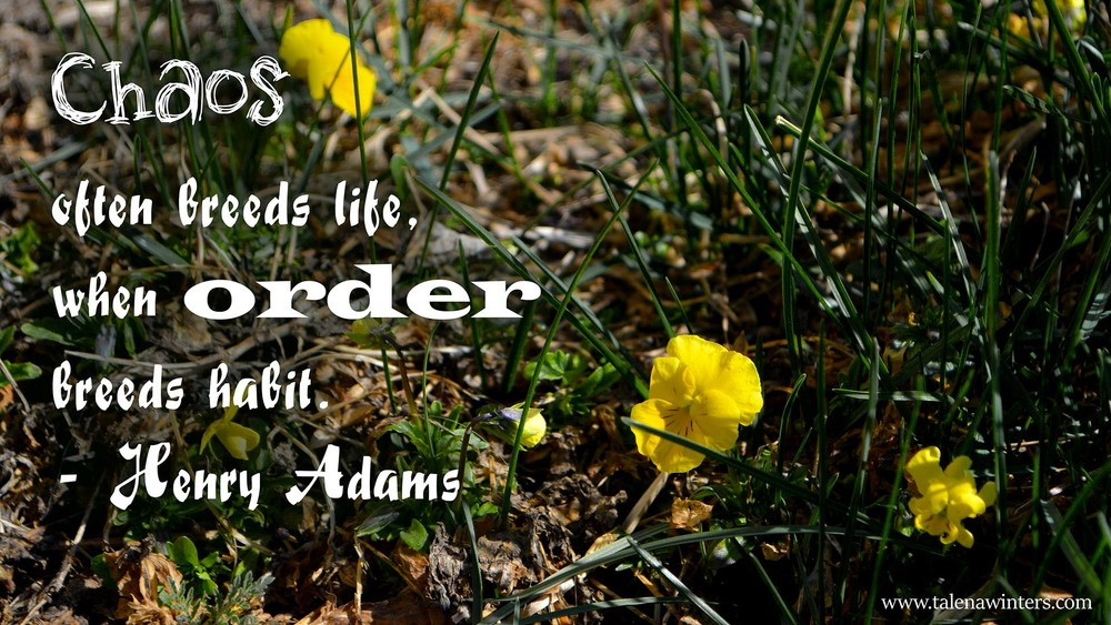 """Chaos often breeds life"" quote desktop wallpaper, 1920x1080px, free from www.talenawinters.com."