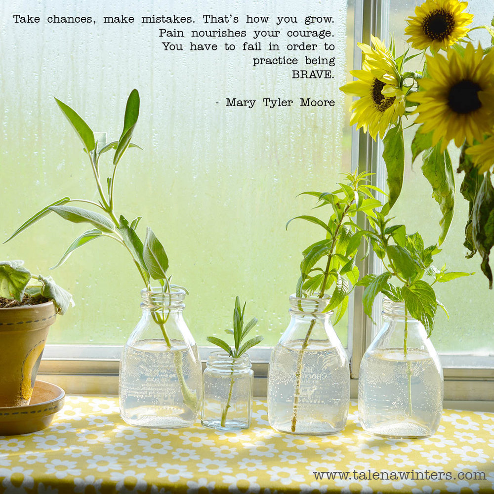 """Take chances, make mistakes. That's how you grow. Pain nourishes your courage. You have to fail in order to practice being brave."" - Mary Tyler Moore. Herb cuttings and sunflowers whose life didn't end at the first frost."