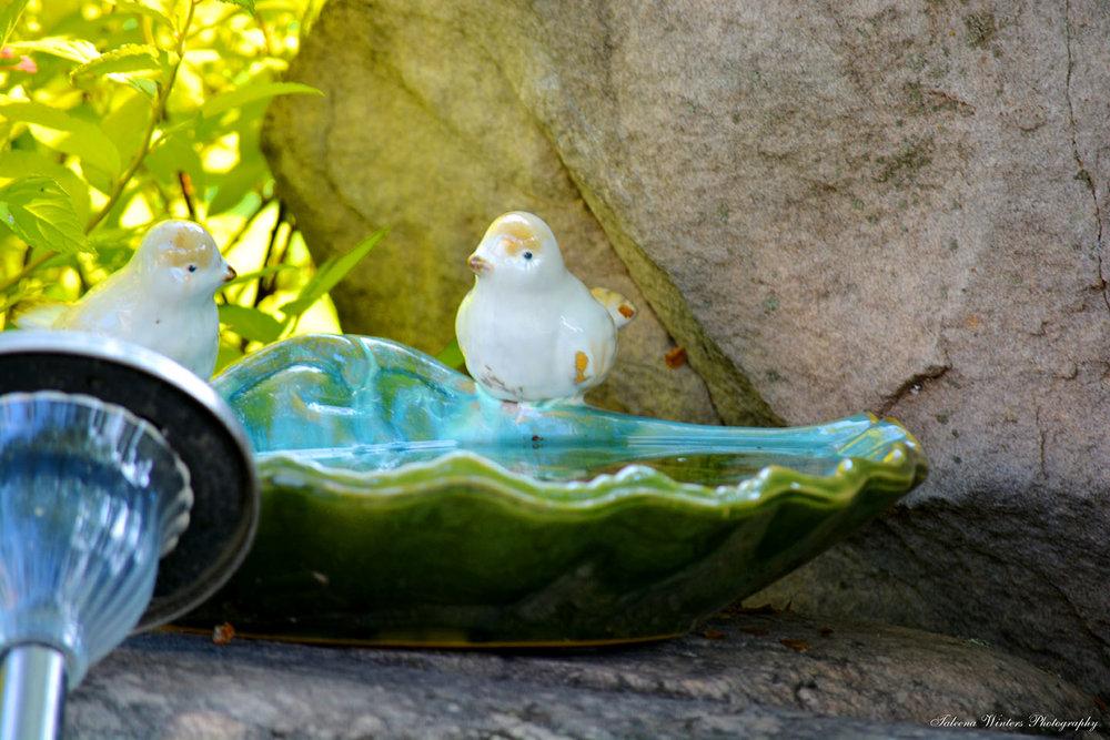 Ceramic-bird-shell-raincatcher