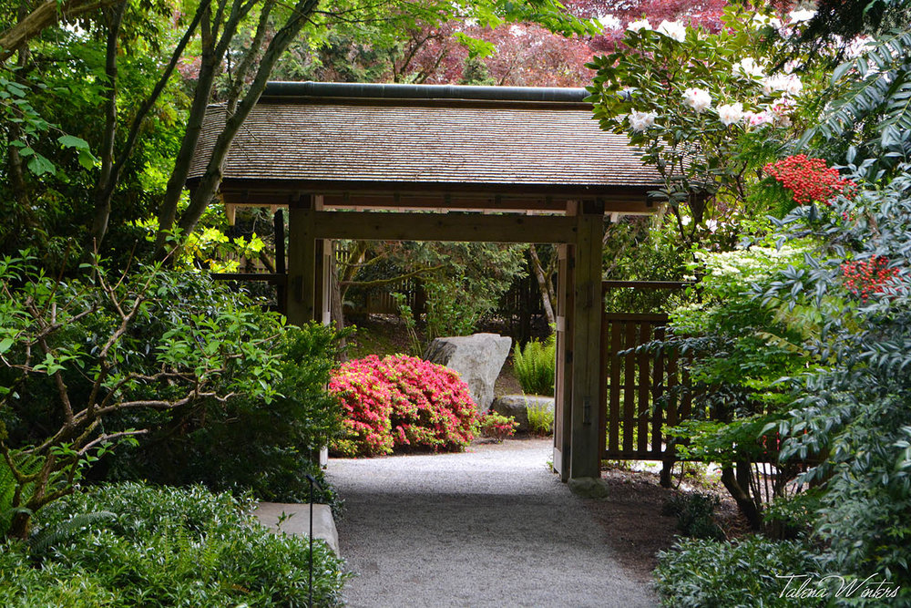 Entrance to the Yao Japanese Garden of the Bellevue Botanical Gardens.