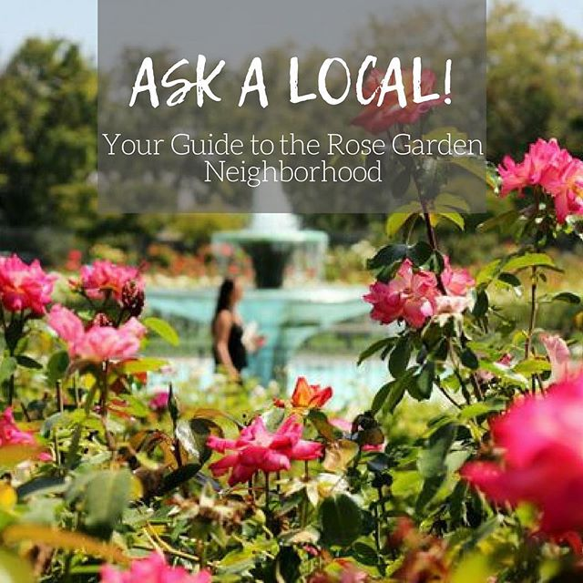 Looking to move? Check out my latest 'Ask A Local' segment on San Jose's Rose Garden Neighborhood. • LINK IN BIO •