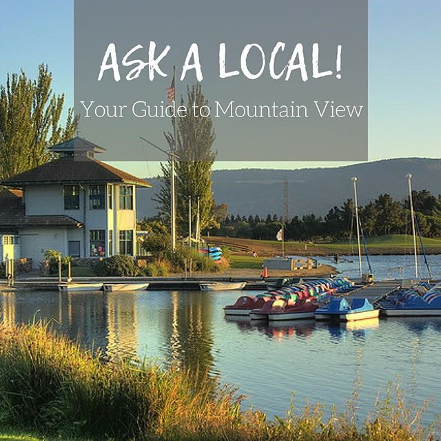 Looking to move? Check out my latest 'Ask A Local' segment on Mountain View. • LINK IN BIO •