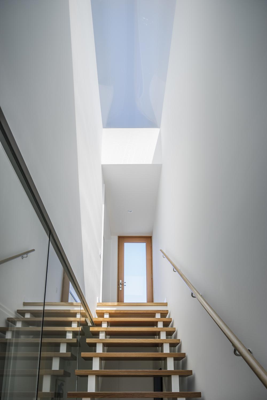 11 skylight.jpg
