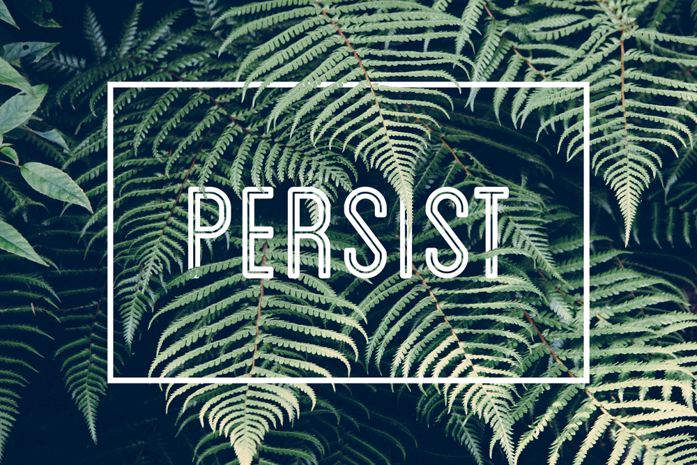 Persist Desktop Wallpaper