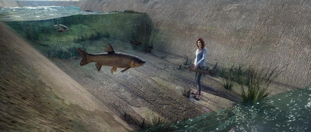 Fish Herding