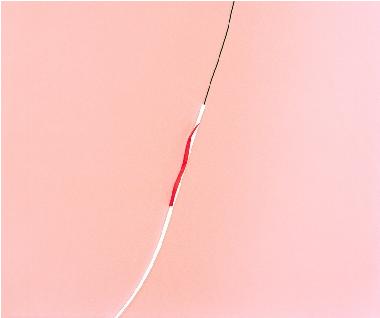Lydia Wegner,  Full Pink , 2013, archival inkjet print, 50x60cm.
