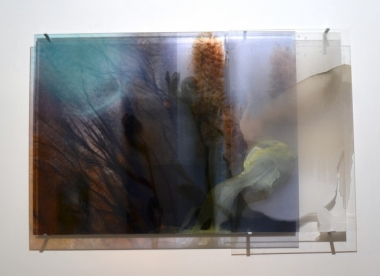 Janet Laurence,  Photosynthesis and Memory , 63 x 103 cm, Duraclear on acrylic, mirror, earth and pigment in oil.