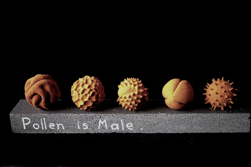 Maria Fernanda Cardoso, Pollen is Male,2012-14, nylon, glue, desert sand, 40 x 10 x 10 cm