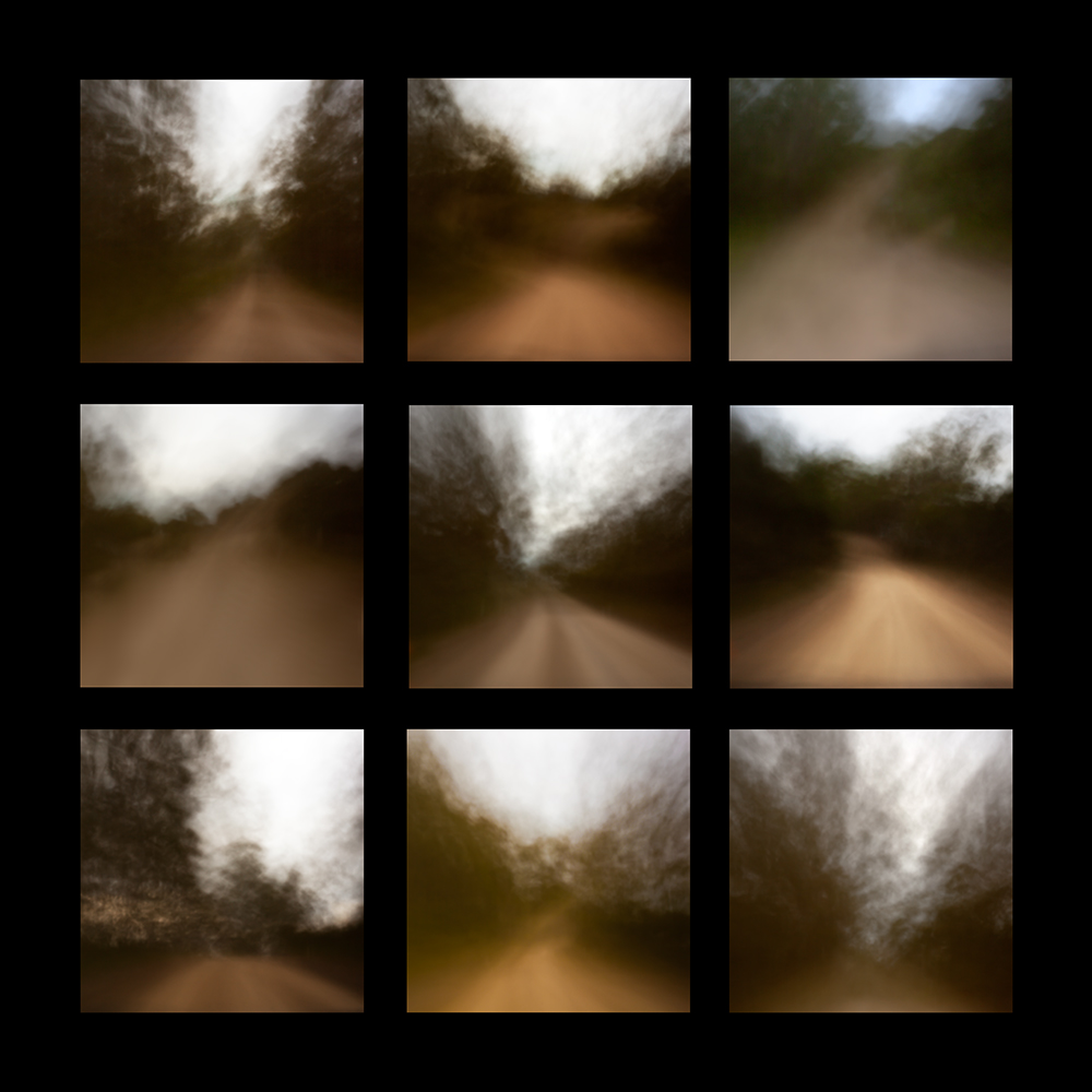 ANNE SCOTT WILSON     9 Incarnations  2014 Digital pinhole print on lightbox 75 x 75 cm