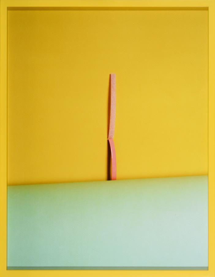 LYDIA WEGNER     Musk Stick  2014 Archival Inkjet Print  74 x 57 cm