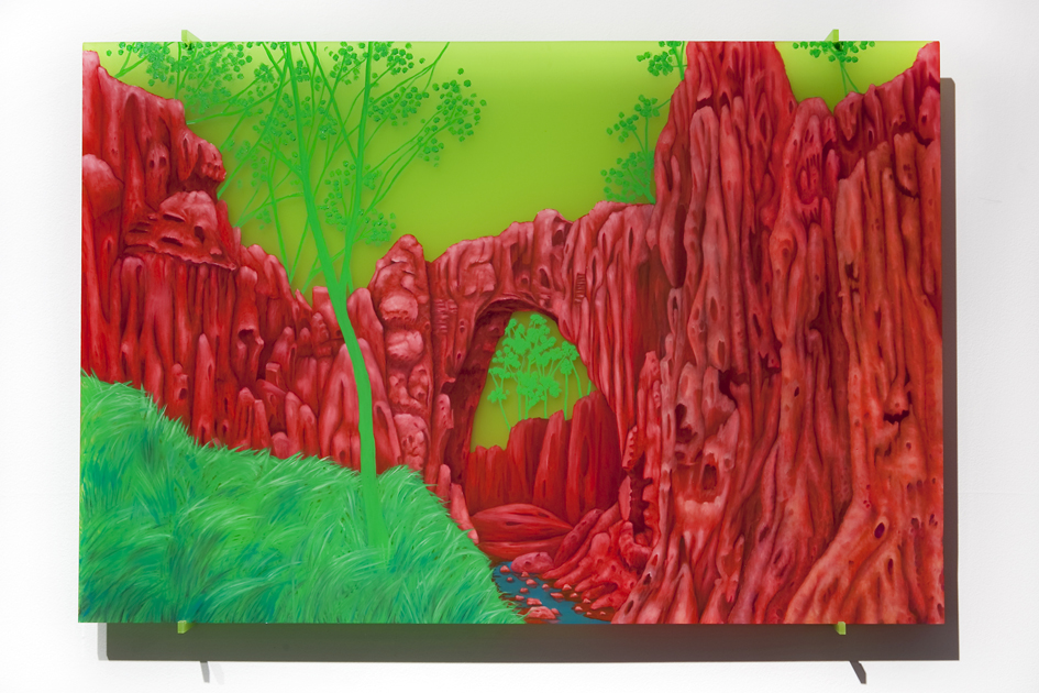 TRACY SARROFF     Alluvial Red  2013 oil paint on perspex 56 x 83   cm