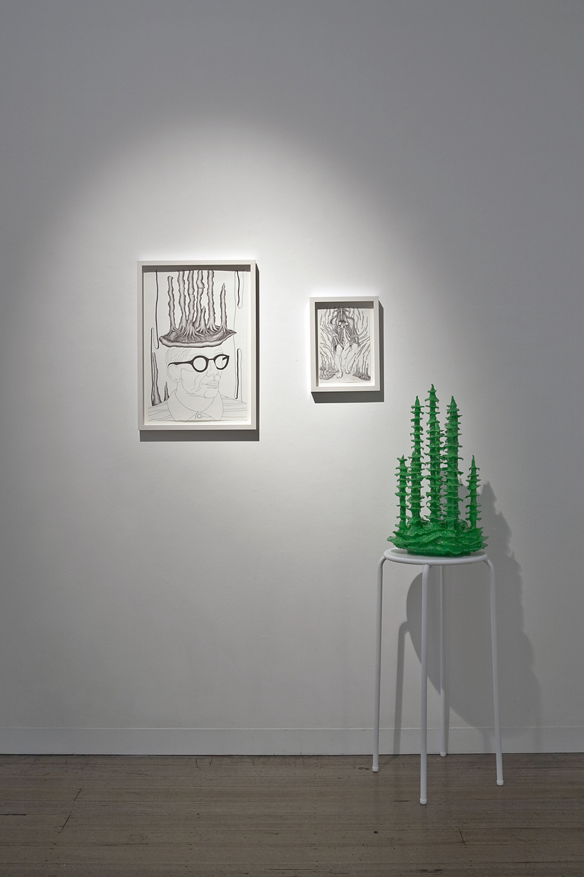 TRACY SARROFF     Congruo , Installation View   2013