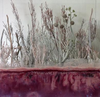 CATHERINE WOO    Salt Lake: Biopsy    2010   Mixed Media 50 x 50 cm