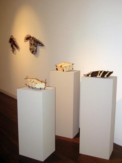 JOHN DAVIS   Gallery Installation