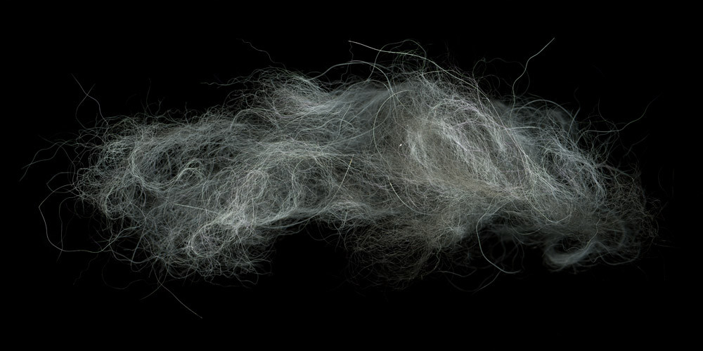 HUANG XU     Hair No.2  2009 Type C Photograph 120 x 245 cm