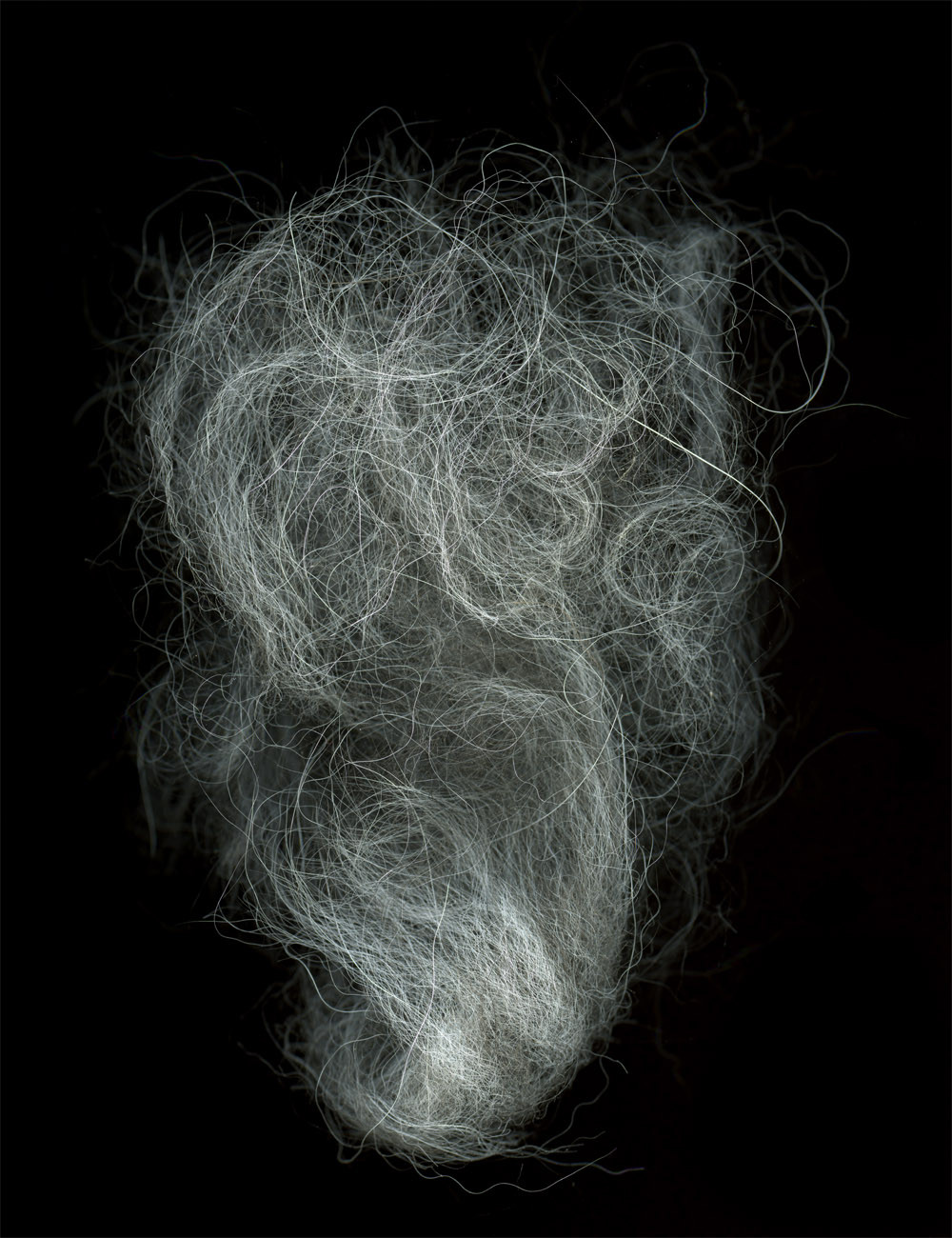 HUANG XU     Hair No. 1  2009 Type C Photograph Edition of 6   160 x 120 cm