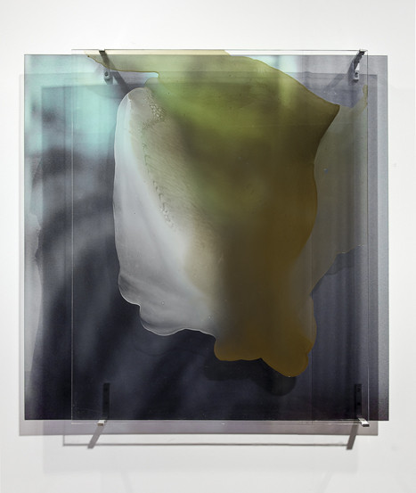 JANET LAURENCE     vanishing series / glimpse / lost mountain, lost forest VI  2010 Duraclear, Mirror, Oil on Acrylic  100 x 100 cm