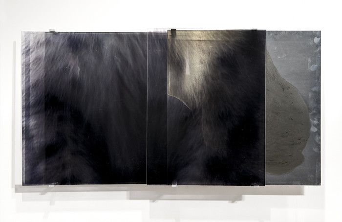 JANET LAURENCE     vanishing series / yearning VII  2010 Duraclear, Mirror, Oil on Acrylic, Aluminium    98 x 50 cm