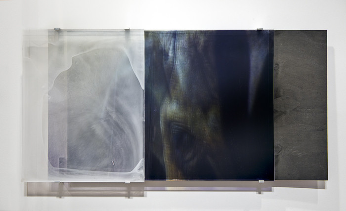 JANET LAURENCE     vanishing series / yearning IX  2010 Duraclear, Mirror, Oil on Acrylic, Aluminium, Burnt Wood    102 x 50 cm