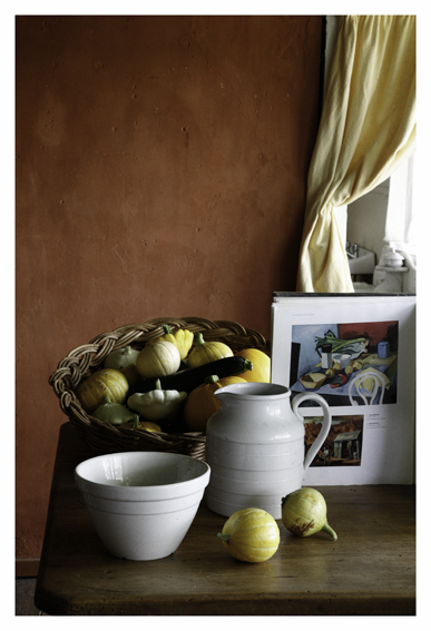 ANNE ZAHALKA     Still Life #1  2010 Type C Photograph 30 x 20 cm