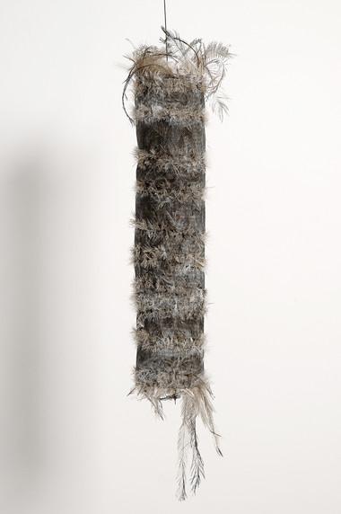 MARIA FERNANDA CARDOSO    Untitled #9    2006-07   emu feathers, fibreglass net, nylon, metal   73 x 20 cm
