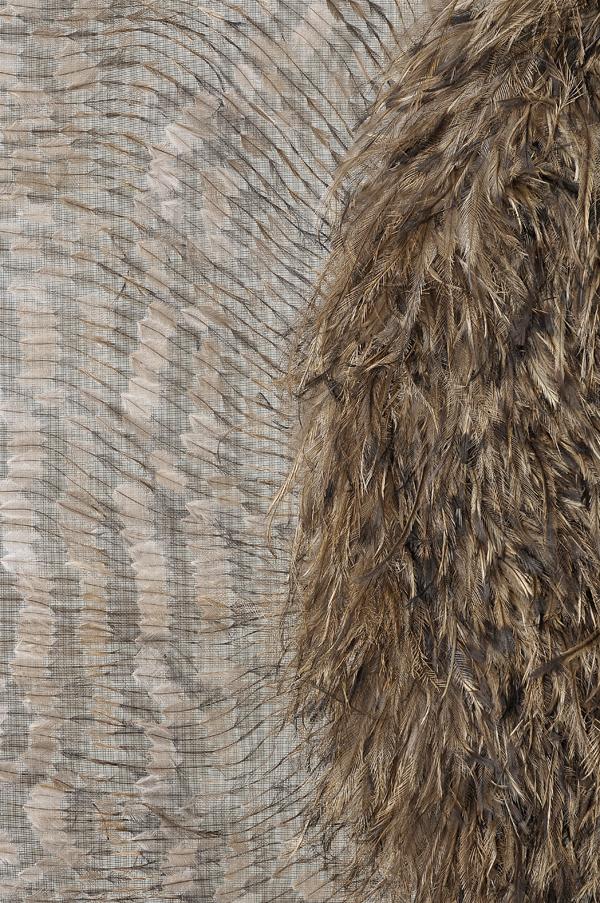 MARIA FERNANDA CARDOSO    Emu Flag #1  - detail   2007   emu feathers, fibreglass netting, impasto, steel, fabric, glue   290 x 180 cm