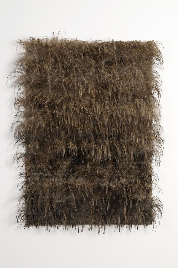 MARIA FERNANDA CARDOSO    Emu Flag #3    2007   emu feathers, fibreglass netting, impasto, steel, fabric, glue, metal   140 x 105 cm