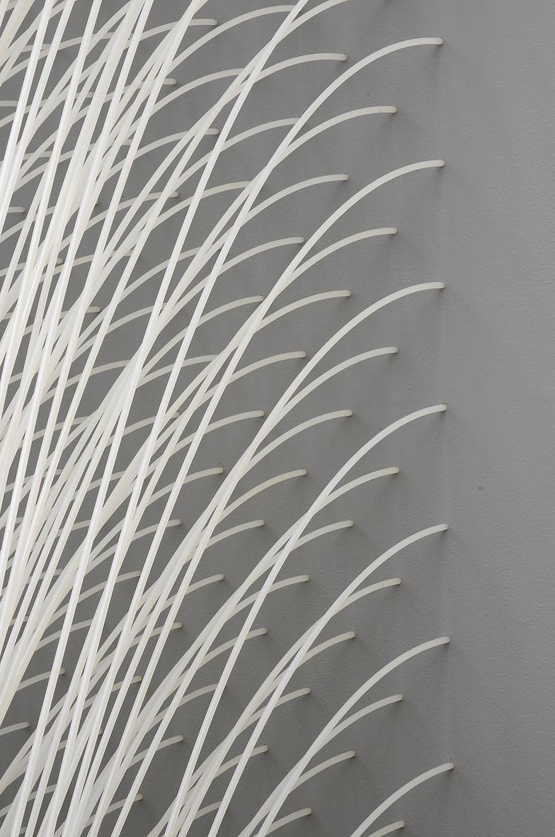 MARIA FERNANDA CARDOSO    Rain Wall    - detail   2008   nylon tubes   380 x 600 cm