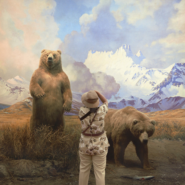 ANNE ZAHALKA     Brown Bears  2006/2007 Type C Photograph edition of 10   80 x 80 cm