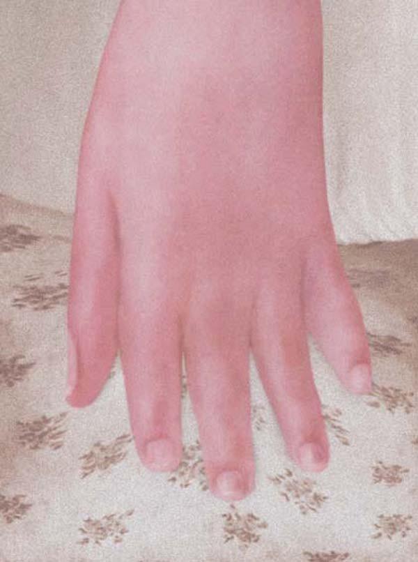 PAT BRASSINGTON    Purr  2005 62 x 84 cm Pigment Print edition of 6