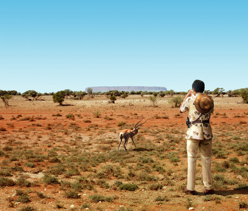 ANNE ZAHALKA     Impala, Central Australia  2003-06 Type C photograph edition of 12   11  5 x 14  5 cm