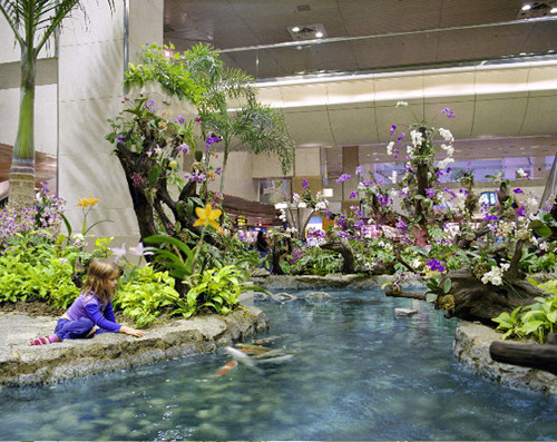 ANNE ZAHALKA     Orchid Garden, Singapore Airport  2003-06 Type C photograph edition of 12   11  5 x 14  5 cm