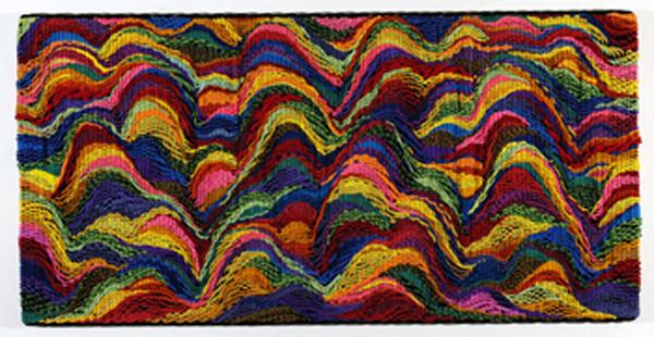 DANI MARTI     Landscape #2  2004 Polypropylene / nylon rope/ wood 150 x 300 cm