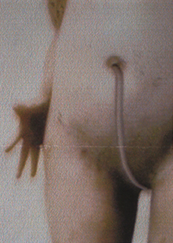 PAT BRASSINGTON     Fragments of/from Memory 29  1992 - 2002 18 x 25 cm Pigment Print edition of 4