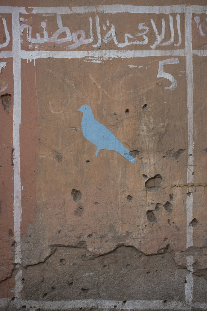 ANNE ZAHALKA     Untitled (pigeon/electoral poster)  2015 Pigment ink on rag paper   100 x 66.6 cm