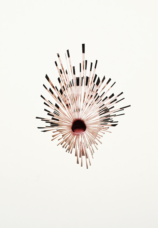 dispersion #1 , 2013, hand cut colour photograph on paper, 60 x 70