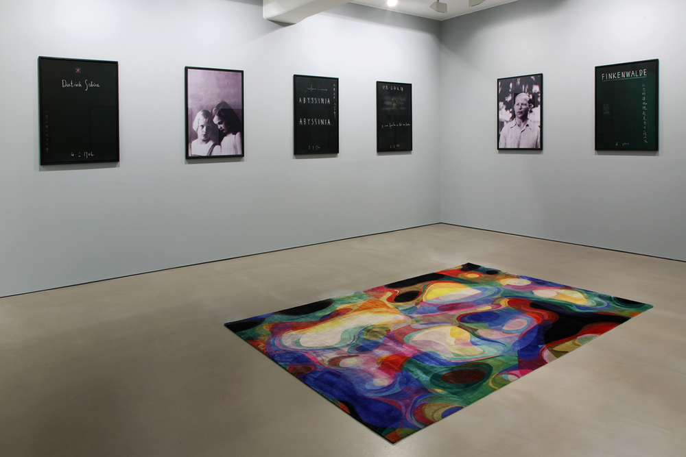 The Bonhoeffer Concept , installation view, 2011
