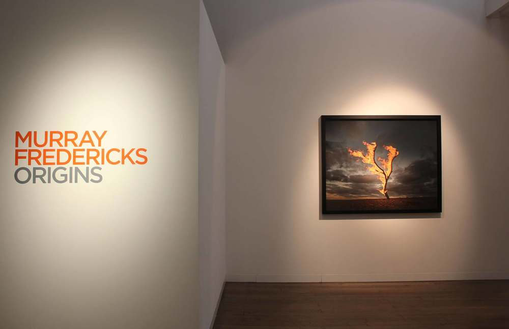 MURRAY FREDERICKS   Origins , installation view 2015