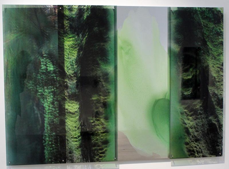 JANET LAURENCE    Chlorophyll Collapse (B) (the Tarkine, Tasmania)  2012 Duraclear, acrylic, dibond mirror, oil glaze 120 x 170cm