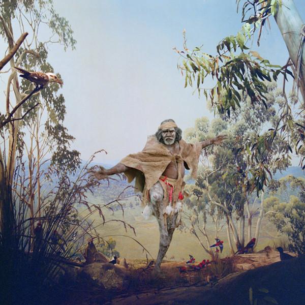 ANNE ZAHALKA     Birds of Australia  2006/2007 Type C Photograph edition of 10   80 x 80 cm