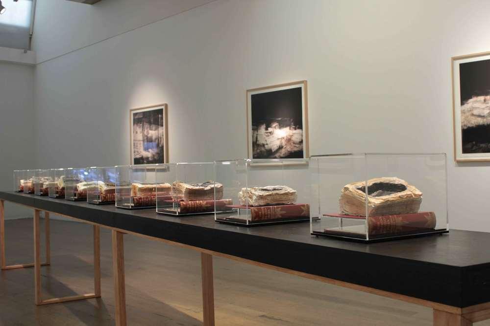 CYRUS TANG   Lacrimae Rerum   (installation view)