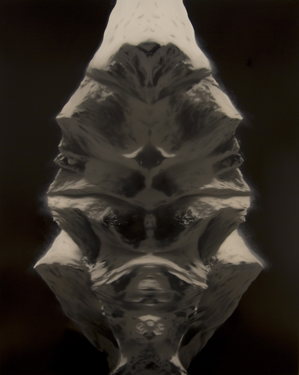 PETER DAVERINGTON     Meta-morphosis  2008 oil and enamel on linen   152 x 122 cm