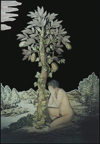 ROSE FARRELL GEORGE PARKIN     Darkening Fields, Act Three  2004-2005 Type C Photograph edition of 10 146 x 100 cm