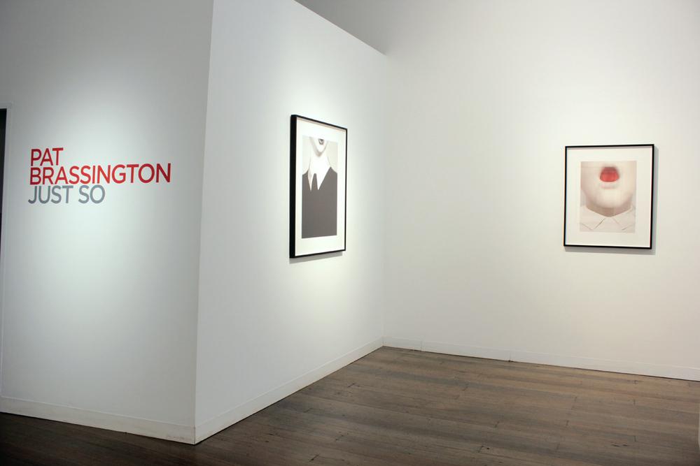 PAT BRASSINGTON   Just So  (installation view)