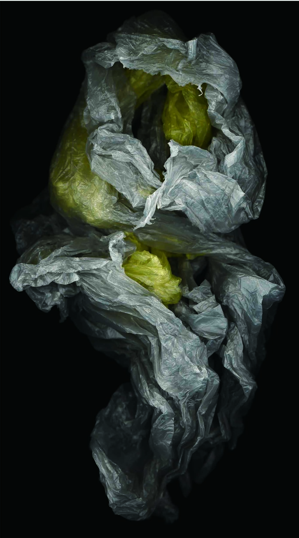 HUANG XU     Fragment No.31  2007 Chromophotograph edition of 6 215 x 122 cm
